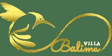 Luxury Villa Seminyak Bali for Rent